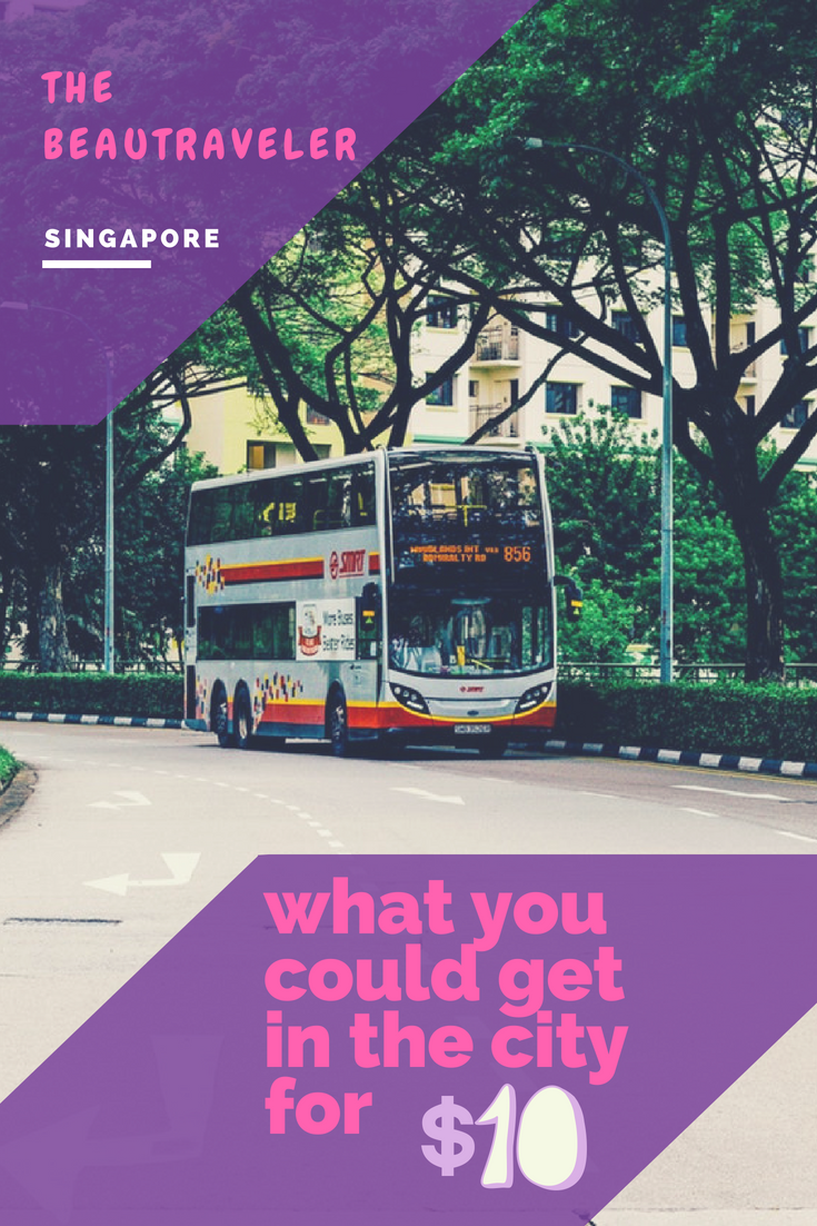 What You Could Get in Singapore for $10 - The BeauTraveler