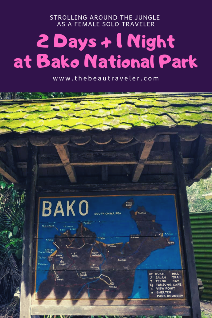 Strolling Around the Jungle as a Female Solo Traveler: 2 Days 1 Night at Bako National Park - The BeauTraveler