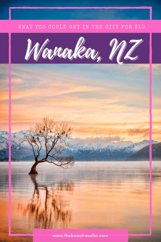 What You Could Get in Wanaka for $10 - The BeauTraveler