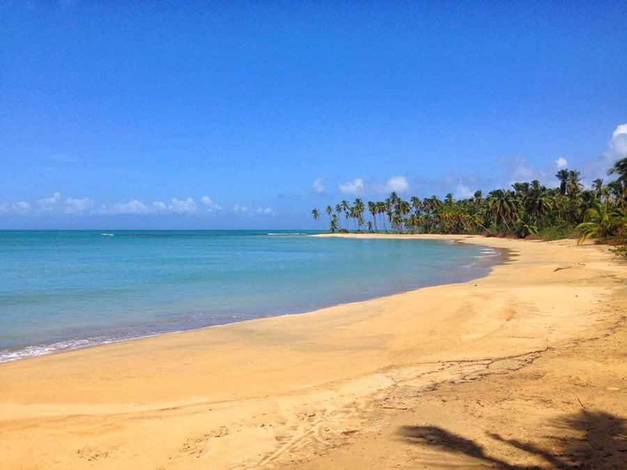 Playa Esmeralda, Punta Cana in Dominican Republic.